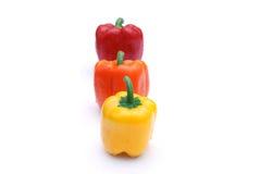 χρωματισμένο πιπέρι Στοκ Φωτογραφία