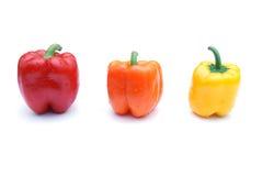 χρωματισμένο πιπέρι Στοκ φωτογραφία με δικαίωμα ελεύθερης χρήσης