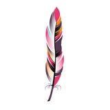 Χρωματισμένο στενό ύφος boho φτερών ελεύθερη απεικόνιση δικαιώματος