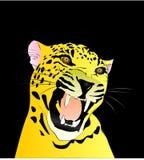 Χρωματισμένο σχέδιο μιας λεοπάρδαλης με ένα μαύρο υπόβαθρο Στοκ φωτογραφία με δικαίωμα ελεύθερης χρήσης