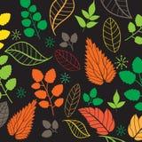 Χρωματισμένο σχέδιο στο θέμα φύλλων Σχέδιο φθινοπώρου Στοκ Εικόνες