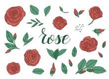 Χρωματισμένο σύνολο τριαντάφυλλων ελεύθερη απεικόνιση δικαιώματος