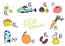 Χρωματισμένο σύνολο βασικών βιταμινών από τα τρόφιμα Στοκ Εικόνες