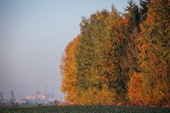 Χρωματισμένο φθινόπωρο δάσος με το μύλο σίτου πόλεων στο υπόβαθρο στοκ εικόνα με δικαίωμα ελεύθερης χρήσης