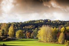 Χρωματισμένο φθινόπωρο τοπίο Στοκ Εικόνες