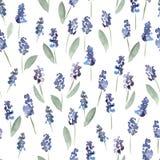 Χρωματισμένο χέρι άνευ ραφής σχέδιο λουλουδιών watercolor Στοκ Φωτογραφίες