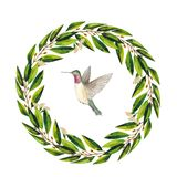 Χρωματισμένο χέρι στεφάνι Watercolor με τα πράσινα φύλλα και το κολίβριο ευκαλύπτων ελεύθερη απεικόνιση δικαιώματος