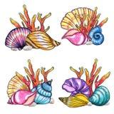 Χρωματισμένο χέρι σύνολο watercolor κοχυλιών και κοραλλιών διανυσματική απεικόνιση