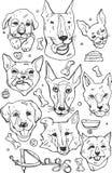 Χρωματισμένο χέρι σύνολο εικονιδίων Doodle Διαφορετικές φυλές του μπουλντόγκ σκυλιών, του λαγωνικού, του κόλλεϊ συνόρων, χρυσό Re Στοκ Φωτογραφίες