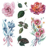 Χρωματισμένο χέρι σύνολο watercolor λουλουδιών που απομονώνεται στο άσπρο υπόβαθρο Στοκ φωτογραφία με δικαίωμα ελεύθερης χρήσης