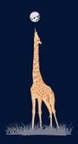 Χρωματισμένο giraffe Στοκ Εικόνες