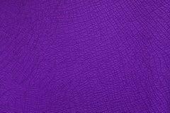 Χρωματισμένο Leder δέρμα Στοκ Φωτογραφία