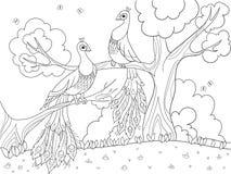 Χρωματισμός κινούμενων σχεδίων για τα παιδιά Ένα πουλί, ένα φτερό ενός πουλιού ή ένα peacock σε ένα δέντρο αγάπη ζευγών ελεύθερη απεικόνιση δικαιώματος