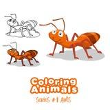 Χρωματισμός των διανυσματικών κινούμενων σχεδίων μυρμηγκιών ζώων για τα παιδιά Στοκ Εικόνες