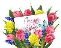Χρόνια πολλά η ευχετήρια κάρτα με την ανθοδέσμη της άνοιξη ανθίζει τις τουλίπες, daffodils, Muscari διάνυσμα ελεύθερη απεικόνιση δικαιώματος