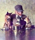 χρόνος γευμάτων Στοκ Φωτογραφίες
