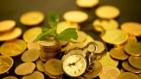 Χρόνος για την επιτυχία της επιχείρησης χρηματοδότησης Επένδυση, έννοια επιχειρησιακών οικονομική ιδεών Η διοικητική αποδοτικότητ απόθεμα βίντεο