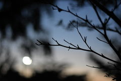 χρόνος ηλιοβασιλέματος απόμακρων πιθανοτήτων έκθεσης Στοκ Φωτογραφίες