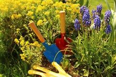 Χρόνος κήπων Itστοκ φωτογραφία με δικαίωμα ελεύθερης χρήσης