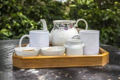 Χρόνος καφέ στον Παναμά Στοκ εικόνες με δικαίωμα ελεύθερης χρήσης