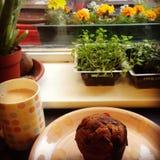 Χρόνος πρόχειρων φαγητών και ένα φλιτζάνι του καφέ Στοκ φωτογραφίες με δικαίωμα ελεύθερης χρήσης