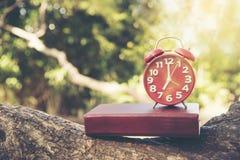 Χρόνος ρολογιών επτά ο ` ξυπνήστε για τις καλές υγείες ρολόι 7 ο ` Στοκ Εικόνα