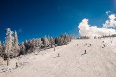 Χρόνος σκι Στοκ Φωτογραφίες