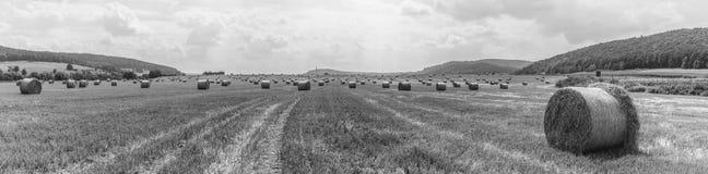 Χρόνος συγκομιδών - δέματα αχύρου σε έναν τομέα - bw στοκ εικόνες με δικαίωμα ελεύθερης χρήσης