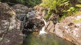 Χρόνος-σφάλμα ενός καταρράκτη στα βουνά αρθρώσεων σε Kandy Σρι Λάνκα 4K απόθεμα βίντεο