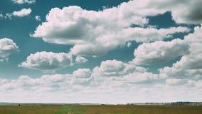 Χρόνος-σφάλμα του αγροτικού τοπίου λιβαδιών τομέων θερινής επαρχίας κάτω από το φυσικό δραματικό ουρανό με τα χνουδωτά σύννεφα απόθεμα βίντεο