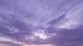 Χρόνος-σφάλμα υποβάθρου Cloudscape απόθεμα βίντεο