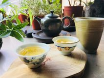 Χρόνος τσαγιού, πολιτισμός τσαγιού & x28 κινεζικό τσάι pot& x29  Στοκ Εικόνες