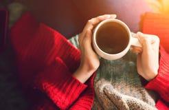 Χρόνος τσαγιού το πρωί Χέρια γυναικών που κρατούν το φλυτζάνι του τσαγιού στο φως του ήλιου πρωινού Στοκ εικόνα με δικαίωμα ελεύθερης χρήσης