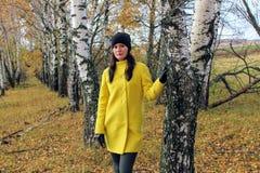 Χρόνος φθινοπώρου: όμορφο κορίτσι σε μια κίτρινη τοποθέτηση παλτών ενάντια σε ένα φθινοπωρινό δάσος σημύδων Στοκ Εικόνες