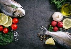 Χρόνος ψαριών Στοκ Φωτογραφία