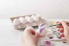 Χρώματα αυγών χρωματισμού για Πάσχα, βοτανική απεικόνιση Στοκ φωτογραφίες με δικαίωμα ελεύθερης χρήσης