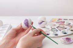 Χρώματα αυγών χρωματισμού για Πάσχα, βοτανική απεικόνιση Στοκ Εικόνες
