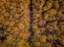 Χρώματα ηλιοβασιλέματος της Γερμανίας φύσης κηφήνων στοκ εικόνες