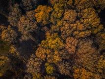 Χρώματα ηλιοβασιλέματος της Γερμανίας φύσης κηφήνων στοκ φωτογραφία με δικαίωμα ελεύθερης χρήσης