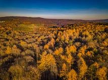 Χρώματα ηλιοβασιλέματος της Γερμανίας φύσης κηφήνων στοκ εικόνα