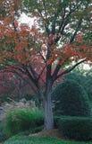 Χρώματα και τοπίο στοκ εικόνα με δικαίωμα ελεύθερης χρήσης