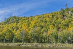 Χρώματα κατά μήκος του ποταμού Ausable Στοκ φωτογραφία με δικαίωμα ελεύθερης χρήσης