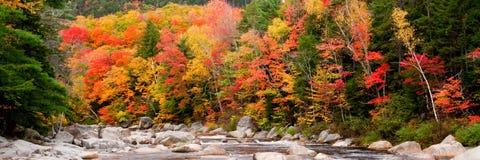 χρώματα καταρρακτών φθινο&pi Στοκ Φωτογραφίες