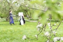 Χρώματα κοριτσιών που χρωματίζουν στον καμβά easel στο πάρκο με το sakura άνθισης Θολωμένη εικόνα για το δημιουργικό υπόβαθρο άνο στοκ εικόνες