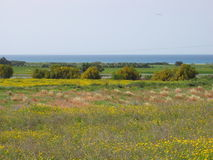 χρώματα Κύπρος Στοκ φωτογραφία με δικαίωμα ελεύθερης χρήσης