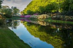 Χρώματα πάρκων στοκ εικόνα