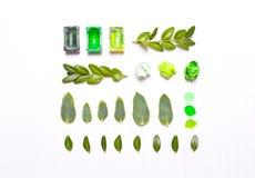 Χρώματα, πράσινα φύλλα σε μια σειρά Στοκ εικόνες με δικαίωμα ελεύθερης χρήσης