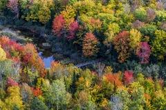 Χρώματα πτώσης Porcupine στα βουνά στοκ φωτογραφία