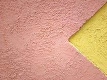 2 χρώματα στην αρμονία Στοκ Φωτογραφίες