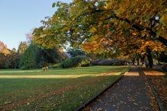 Χρώματα της πτώσης στο εθελοντικό πάρκο, Σιάτλ Ουάσιγκτον στοκ εικόνα